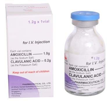 Children Dry Powder Injection Amoxicillin Clavulanate Potassium